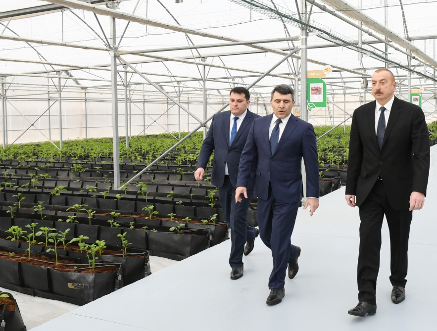 President Ilham Aliyev attended inauguration of Research Institute of Vegetable Growing